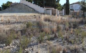 Продается участок возле San Vicente del Raspeig Аликанте